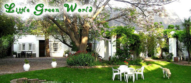 LITTLE GREEN WORLD, BEAUFORT WEST